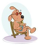 hond-op-stoel-38813627